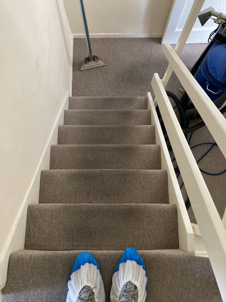 Stairs Carpet Cleaning Before