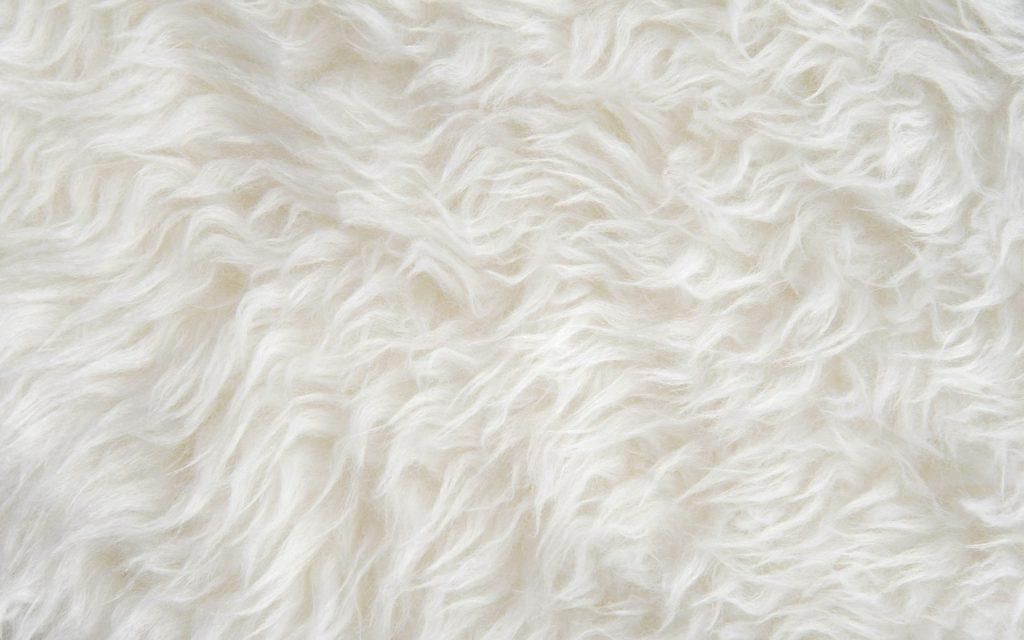 Sheepsking products