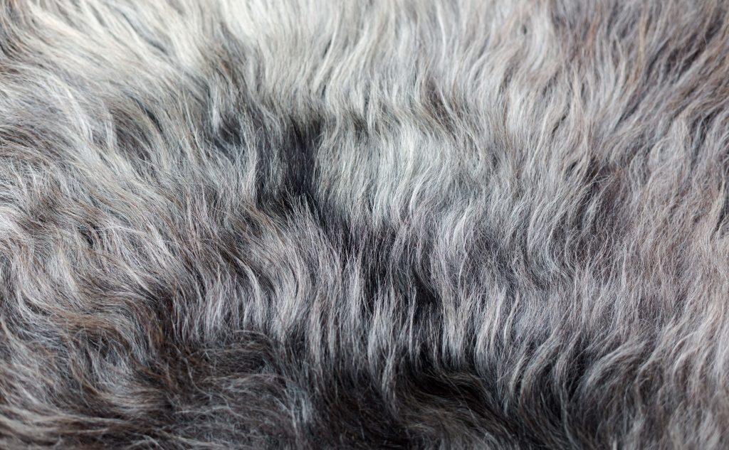 wash a sheepskin rug