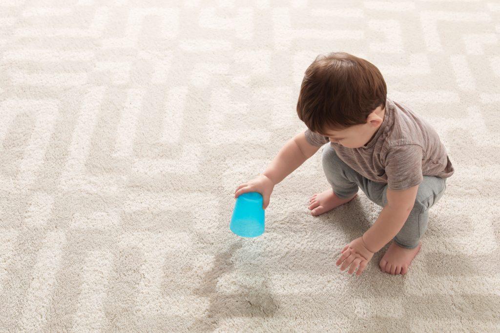 damp carpet